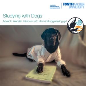 Studieren mit Hund