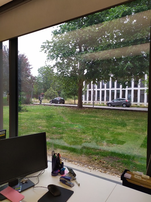 Mit einem angenehmen Blick ins Grüne kann man sich belohnen. Der Ausblick aus dem hellen Büro von Aliki Charalabidou.